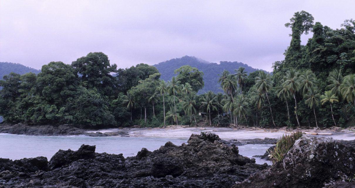 Medidas adoptadas en el Chocó frente a epidemia del virus del dengue - Fórmula Médica